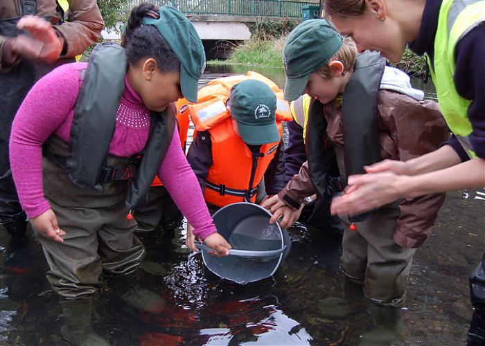 'Trout In the Classroom' Wandle Trust